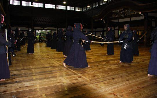 世界の剣道人口が増加傾向の中、日本の剣道人口が減る理由は?