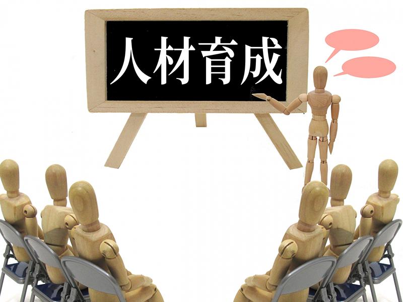 人材育成の人形イメージ